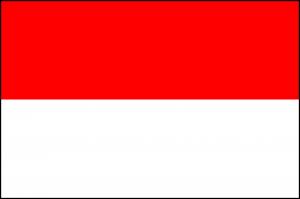 Repatriation to Indonesia